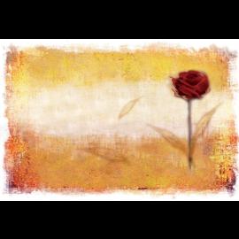 Suport farfurie (placemat) din hartie 35x50 cm, Romance - Fato